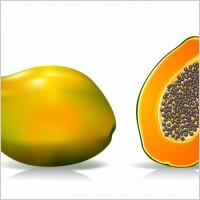 Papaya for longevity and wellness